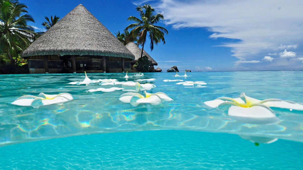 paradise_beach_1920x10801